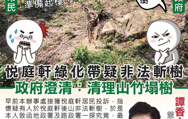 悅庭軒綠化帶疑非法斬樹? 政府澄清:清理山竹塌樹