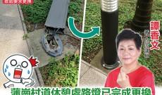 蒲崗村道休憩處路燈已完成更換 4月底將進行修飾工程 保障使用者安全