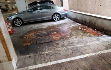 2020年07月22日 龍環閣停車場車位污水